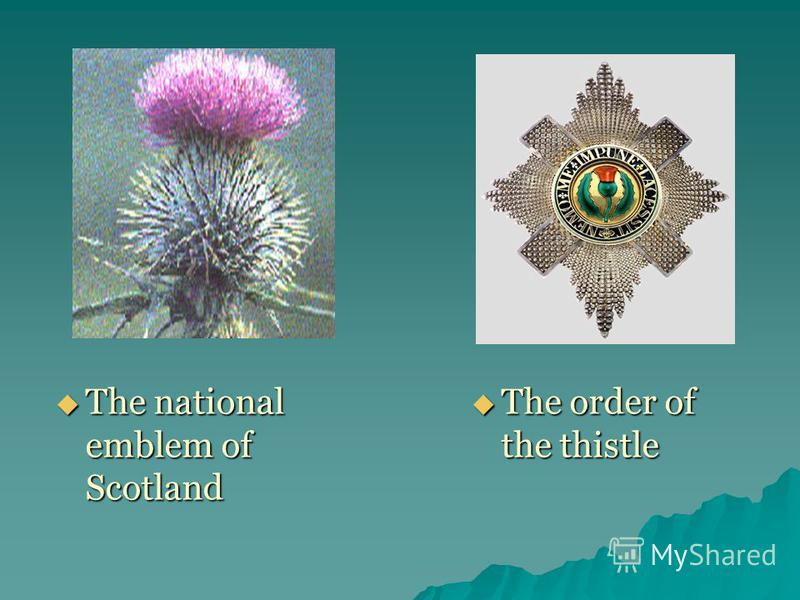 The national emblem of Scotland The national emblem of Scotland The order of the thistle The order of the thistle