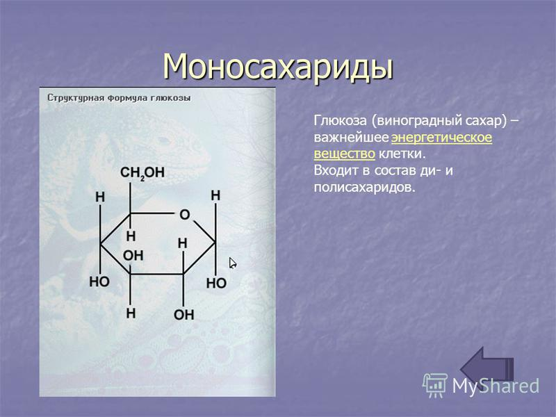 Моносахариды Глюкоза (виноградный сахар) – важнейшее энергетическое вещество клетки.энергетическое вещество Входит в состав ди- и полисахаридов.