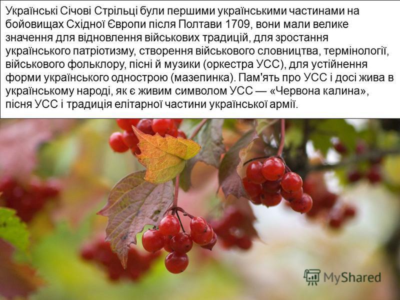 Українські Січові Стрільці були першими українськими частинами на бойовищах Східної Європи після Полтави 1709, вони мали велике значення для відновлення військових традицій, для зростання українського патріотизму, створення військового словництва, те