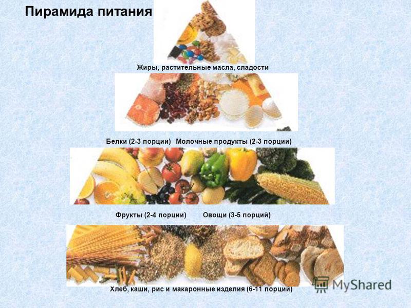 Пирамида питания Жиры, растительные масла, сладости Белки (2-3 порции) Молочные продукты (2-3 порции) Фрукты (2-4 порции) Овощи (3-5 порций) Хлеб, каши, рис и макаронные изделия (6-11 порций)