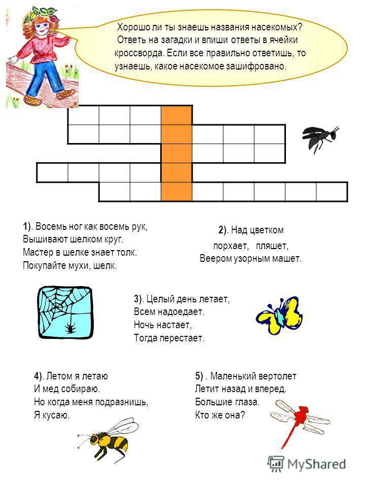 Хорошо ли ты знаешь названия насекомых? Ответь на загадки и впиши ответы в ячейки кроссворда. Если все правильно ответишь, то узнаешь, какое насекомое зашифровано. 1). Восемь ног как восемь рук, Вышивают шелком круг. Мастер в шелке знает толк. Покупа