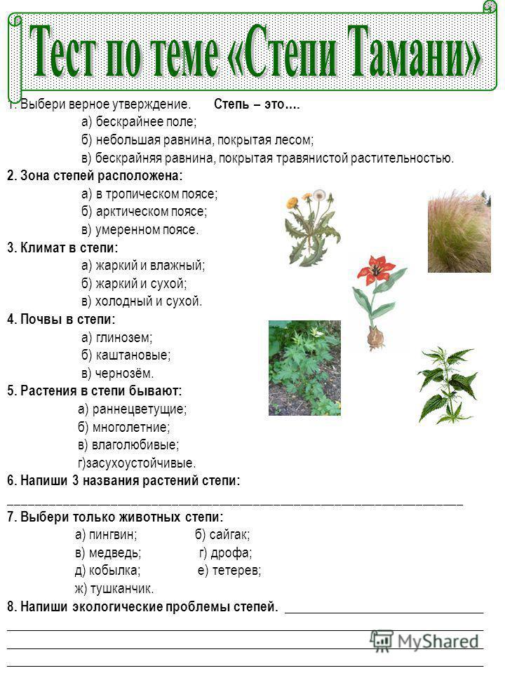 1. Выбери верное утверждение. Степь – это…. а) бескрайнее поле; б) небольшая равнина, покрытая лесом; в) бескрайняя равнина, покрытая травянистой растительностью. 2. Зона степей расположена: а) в тропическом поясе; б) арктическом поясе; в) умеренном