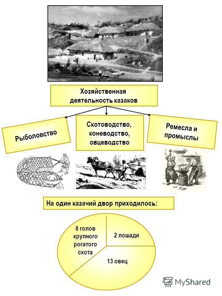 Хозяйственная деятельность казаков Скотоводство, коневодство, овцеводство 8 голов крупного рогатого скота 2 лошади 13 овец Рыболовство Ремесла и промыслы На один казачий двор приходилось: