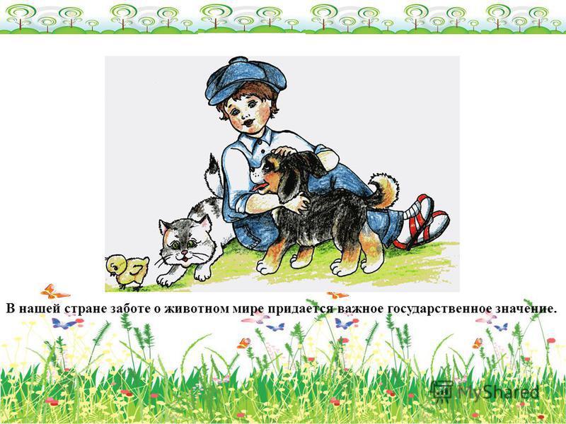 В нашей стране заботе о животном мире придается важное государственное значение.