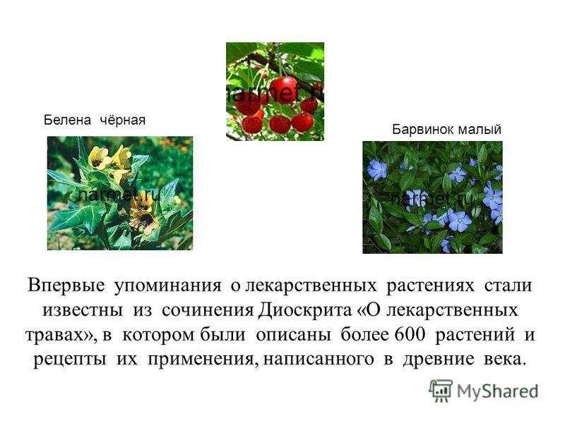 Впервые упоминания о лекарственных растениях стали известны из сочинения Диоскрита «О лекарственных травах», в котором были описаны более 600 растений и рецепты их применения, написанного в древние века. Барвинок малый Белена чёрная