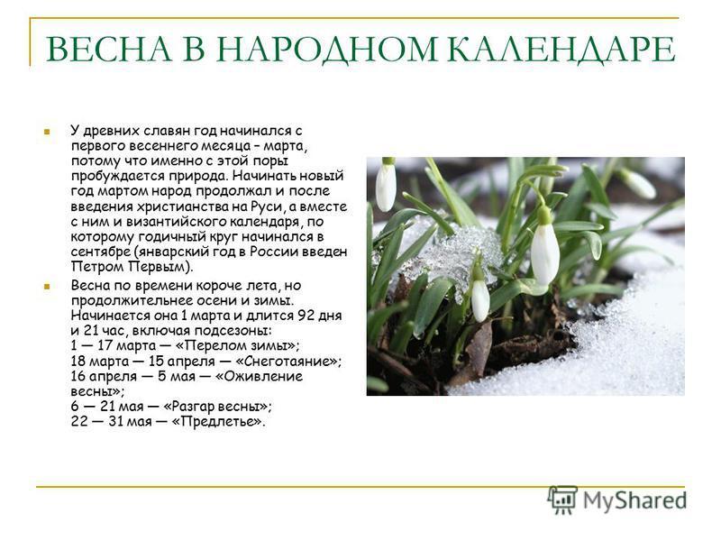 ВЕСНА В НАРОДНОМ КАЛЕНДАРЕ У древних славян год начинался с первого весеннего месяца – марта, потому что именно с этой поры пробуждается природа. Начинать новый год мартом народ продолжал и после введения христианства на Руси, а вместе с ним и визант