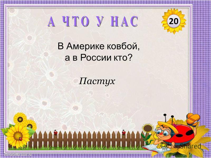 Пастух В Америке ковбой, а в России кто? 20