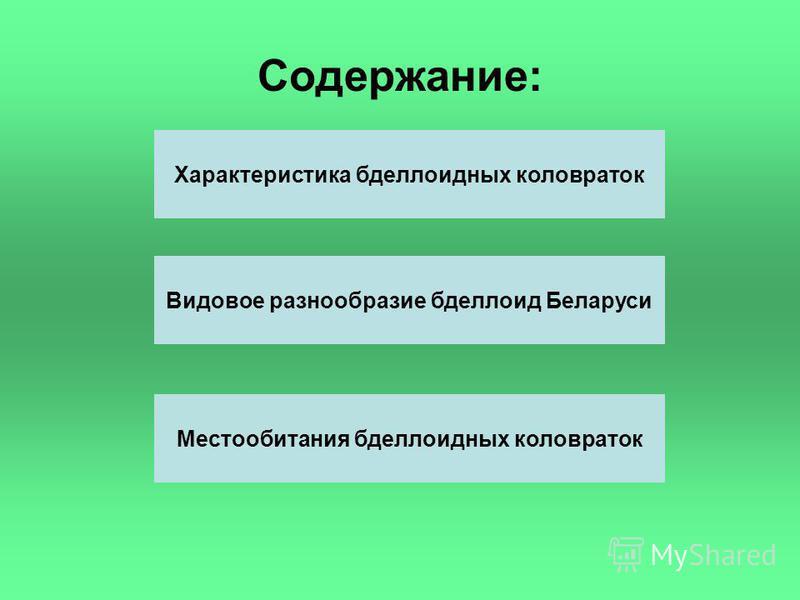 Содержание: Характеристика бделлоидных коловраток Видовое разнообразие бделлоид Беларуси Местообитания бделлоидных коловраток