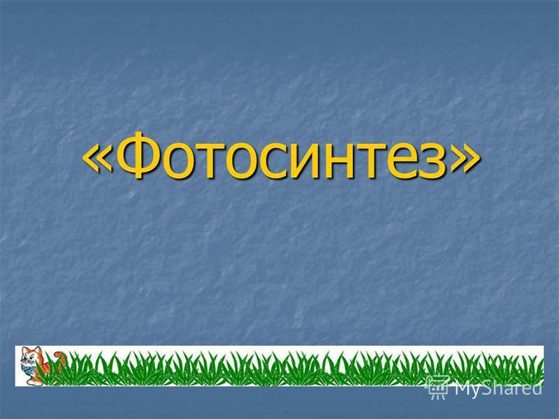 «Фотосинтез»