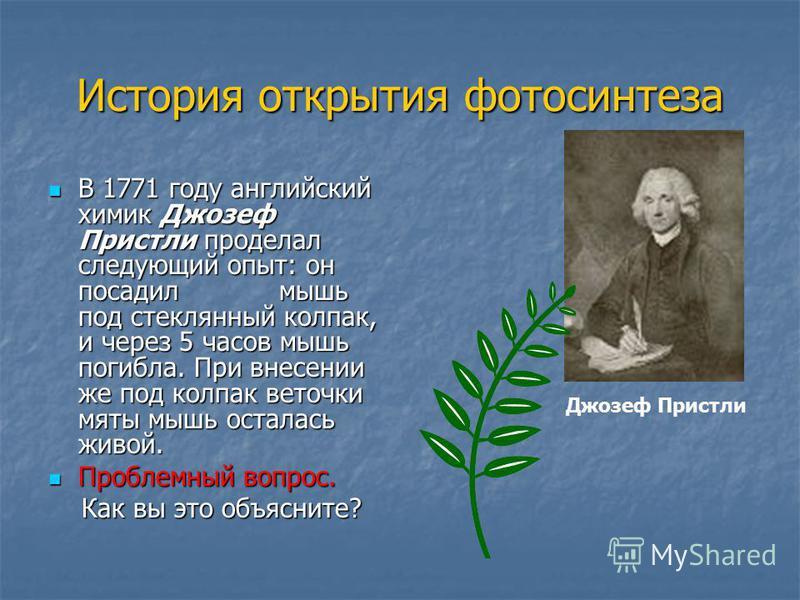 История открытия фотосинтеза В 1771 году английский химик Джозеф Пристли проделал следующий опыт: он посадил мышь под стеклянный колпак, и через 5 часов мышь погибла. При внесении же под колпак веточки мяты мышь осталась живой. В 1771 году английский