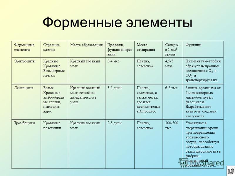 Мечников Илья Ильич (1845-1916) Выдающийся русский учёный, положивший начало многим важнейшим направлениям в биологии и медицине. Автор знаменитой фагоцитарной теории иммунитета, за которую ему, первому из русских биологов, была присуждена Нобелевска