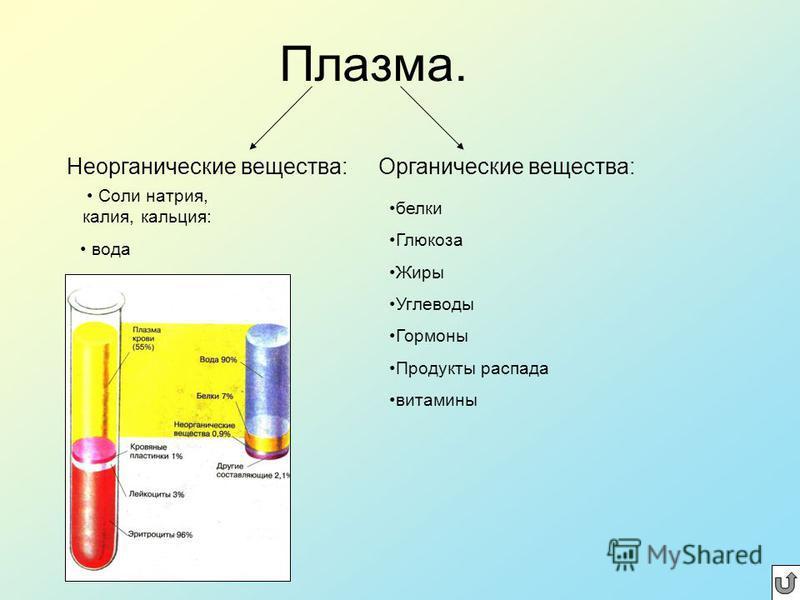 Функции крови. 1. Питательная 2. Дыхательная 3. Гуморальная 4. Выделительная 5. Защитная 6. Терморегуляторная 7.Гомеостатическая