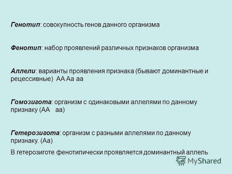 Генотип: совокупность генов данного организма Фенотип: набор проявлений различных признаков организма Аллели: варианты проявления признака (бывают доминантные и рецессивные) АА Аа а Гомозигота: организм с одинаковыми аллелями по данному признаку (АА