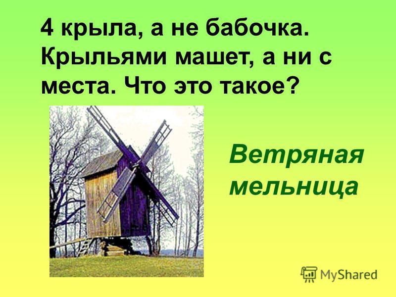4 крыла, а не бабочка. Крыльями машет, а ни с места. Что это такое? Ветряная мельница