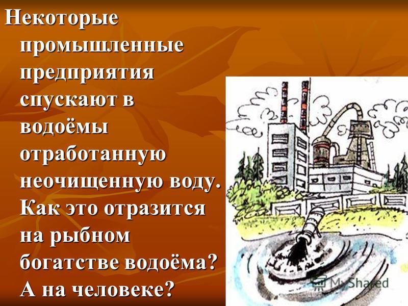 Некоторые промышленные предприятия спускают в водоёмы отработанную неочищенную воду. Как это отразится на рыбном богатстве водоёма? А на человеке?