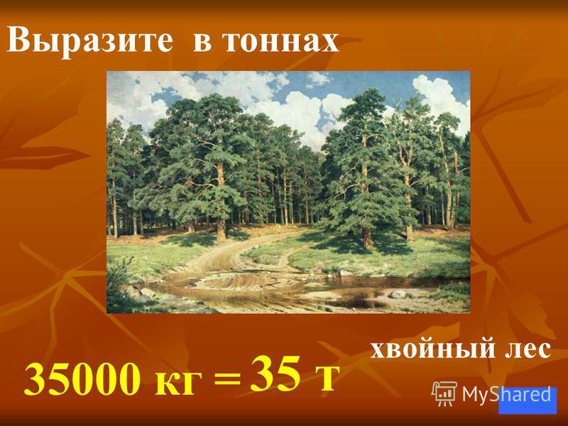 Выразите в тоннах 35000 кг = 35 т хвойный лес