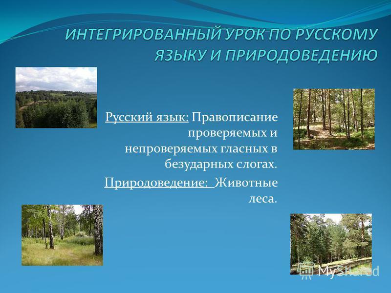 Русский язык: Правописание проверяемых и непроверяемых гласных в безударных слогах. Природоведение: Животные леса.