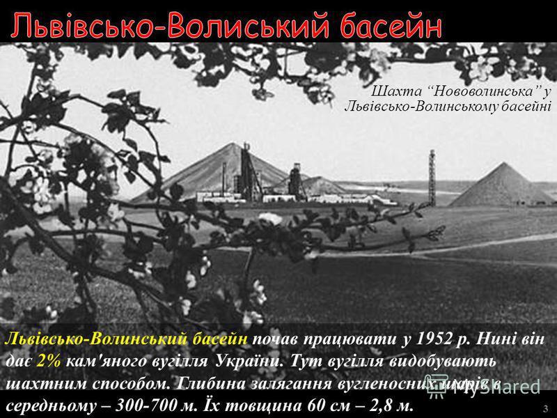 Нелегальні шахти на Донбасі 3 Великих збитків вугільній промисловості Донбасу наносять нелегальні шахти. До того ж у них гине багато шахтарів.