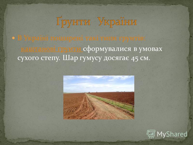 В Україні поширені такі типи ґрунтів: каштанові ґрунти сформувалися в умовах сухого степу. Шар гумусу досягає 45 см.