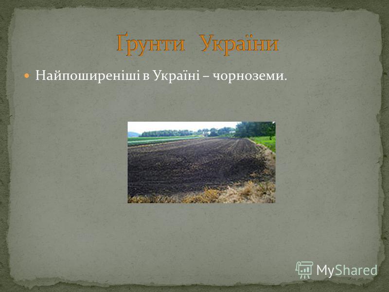 Найпоширеніші в Україні – чорноземи.