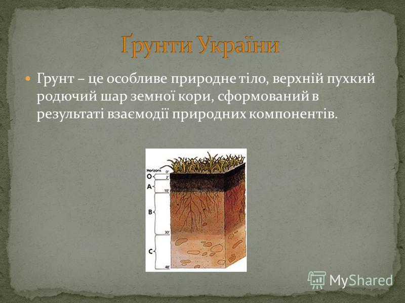 Грунт – це особливе природне тіло, верхній пухкий родючий шар земної кори, сформований в результаті взаємодії природних компонентів.