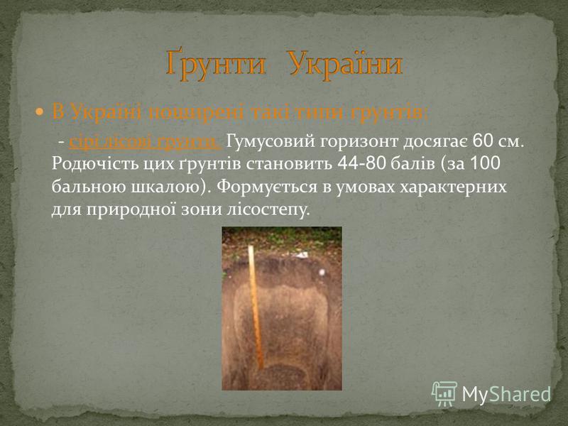В Україні поширені такі типи ґрунтів: - сірі лісові ґрунти. Гумусовий горизонт досягає 60 см. Родючість цих ґрунтів становить 44-80 балів (за 100 бальною шкалою). Формується в умовах характерних для природної зони лісостепу.