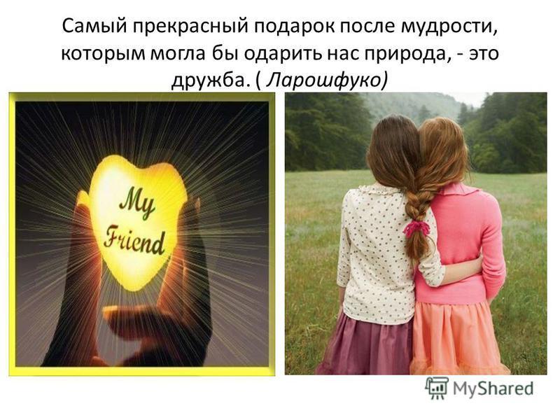 Самый прекрасный подарок после мудрости, которым могла бы одарить нас природа, - это дружба. ( Ларошфуко)