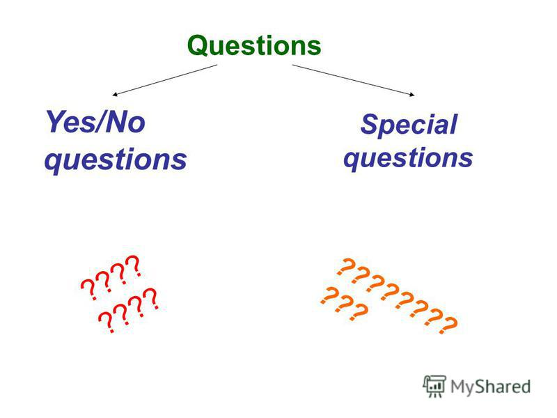 Questions Yes/No questions Special questions ???? ???????? ???