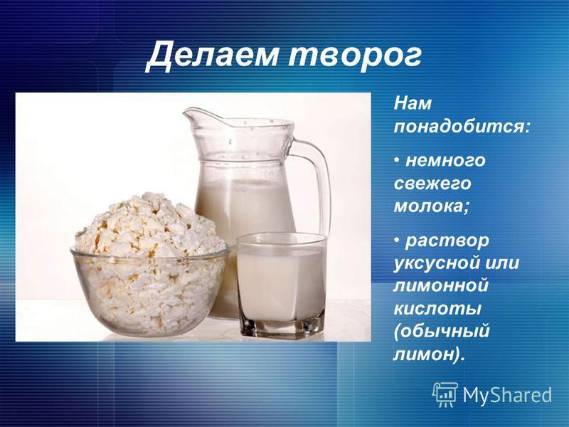 Как сделать творог с домашнего молока не кислым 737