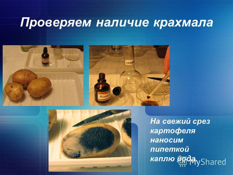 Проверяем наличие крахмала На свежий срез картофеля наносим пипеткой каплю йода.