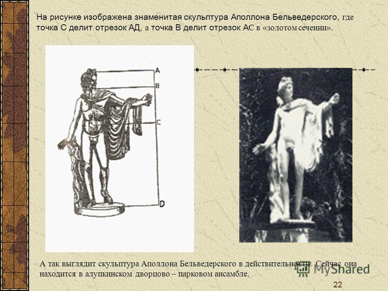 22 На рисунке изображена знаменитая скульптура Аполлона Бельведерского, где точка С делит отрехзок АД, а точка В делит отрехзок А С в «золотом сечении». А так выглядит скульптура Аполлона Бельведерского в действительности. Сейчас она находится в алуп