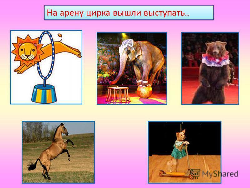 На арену цирка вышли выступать …