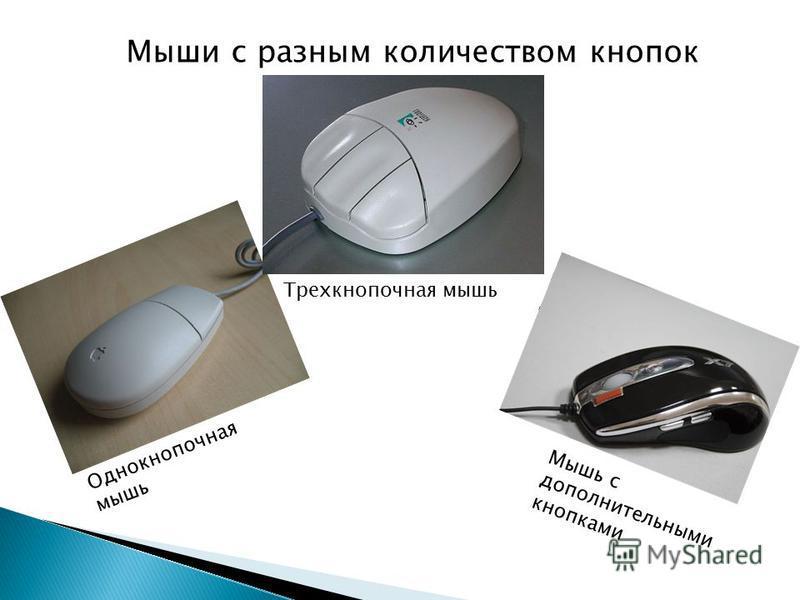 Мыши с разным количеством кнопок Однокнопочная мышь Трехкнопочная мышь Мышь с дополнительными кнопками