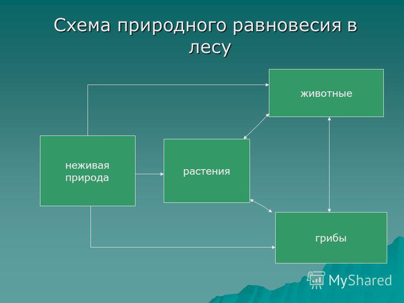 Схема природного равновесия в лесу Схема природного равновесия в лесу неживая природа растения животные грибы