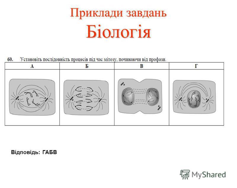 Приклади завдань Біологія Відповідь: ГАБВ