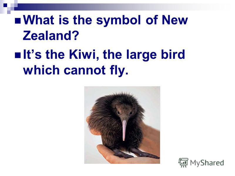 What is the symbol of New Zealand? It s the Kiwi, the large bird which cannot fly.
