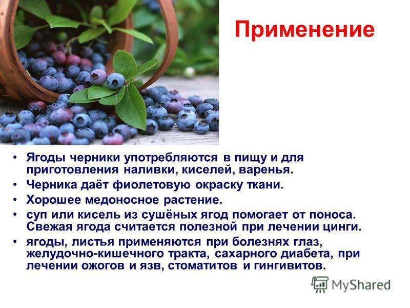 Применение Ягоды черники употребляются в пищу и для приготовления наливки, киселей, варенья. Черника даёт фиолетовую окраску ткани. Хорошее медоносное растение. суп или кисель из сушёных ягод помогает от поноса. Свежая ягода считается полезной при ле