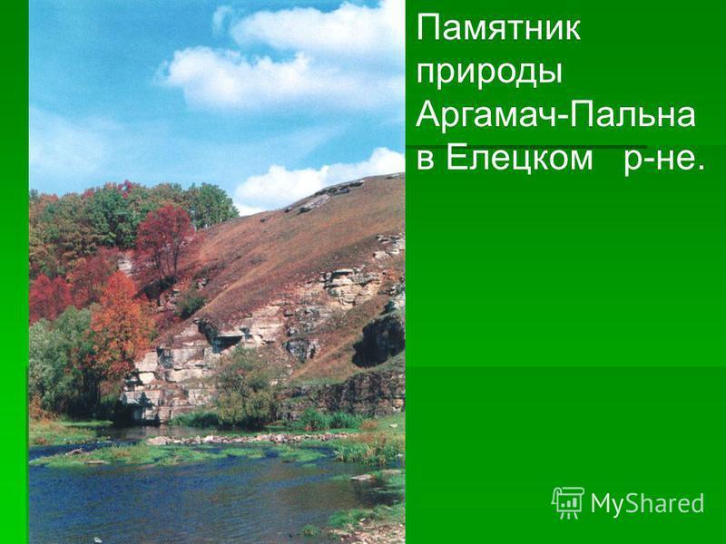 Памятник природы Аргамач-Пальна в Елецком р-не.
