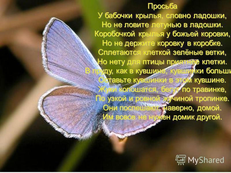 Просьба У бабочки крылья, словно ладошки, Но не ловите летунью в ладошки. Коробочкой крылья у божьей коровки, Но не держите коровку в коробке. Сплетаются клеткой зелёные ветки, Но нету для птицы приятнее клетки. В пруду, как в кувшине, кувшинки больш