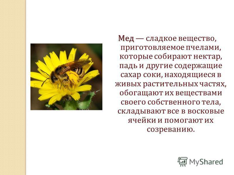 Мед Мед сладкое вещество, приготовляемое пчелами, которые собирают нектар, падь и другие содержащие сахар соки, находящиеся в живых растительных частях, обогащают их веществами своего собственного тела, складывают все в восковые ячейки и помогают их