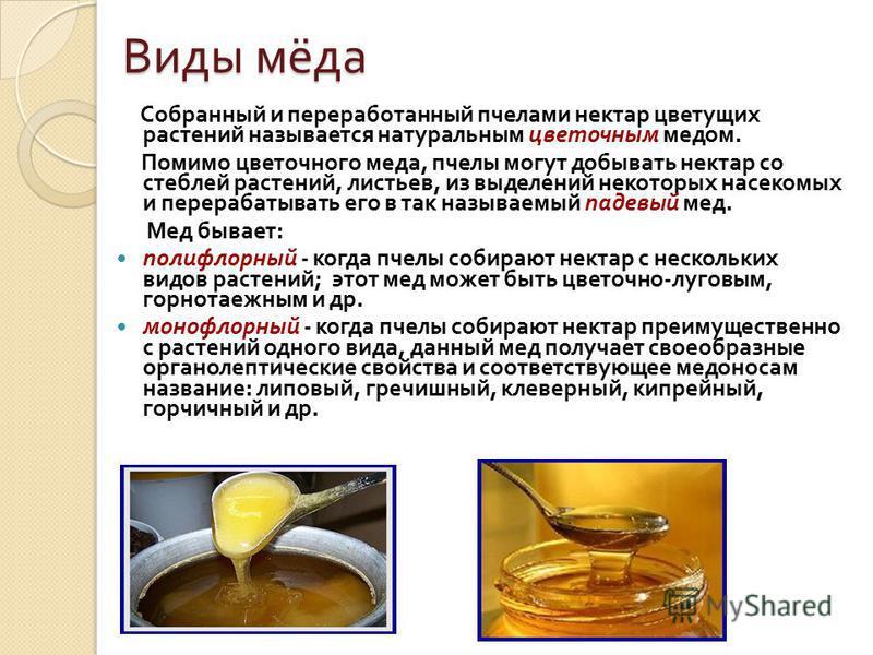 Виды мёда Собранный и переработанный пчелами нектар цветущих растений называется натуральным цветочным медом. Помимо цветочного меда, пчелы могут добывать нектар со стеблей растений, листьев, из выделений некоторых насекомых и перерабатывать его в та