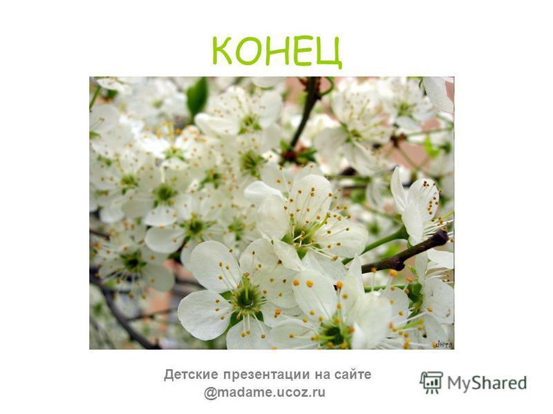 КОНЕЦ @madame.ucoz.ru Детские презентации на сайте