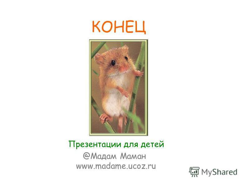 КОНЕЦ @Мадам Маман www.madame.ucoz.ru Презентации для детей