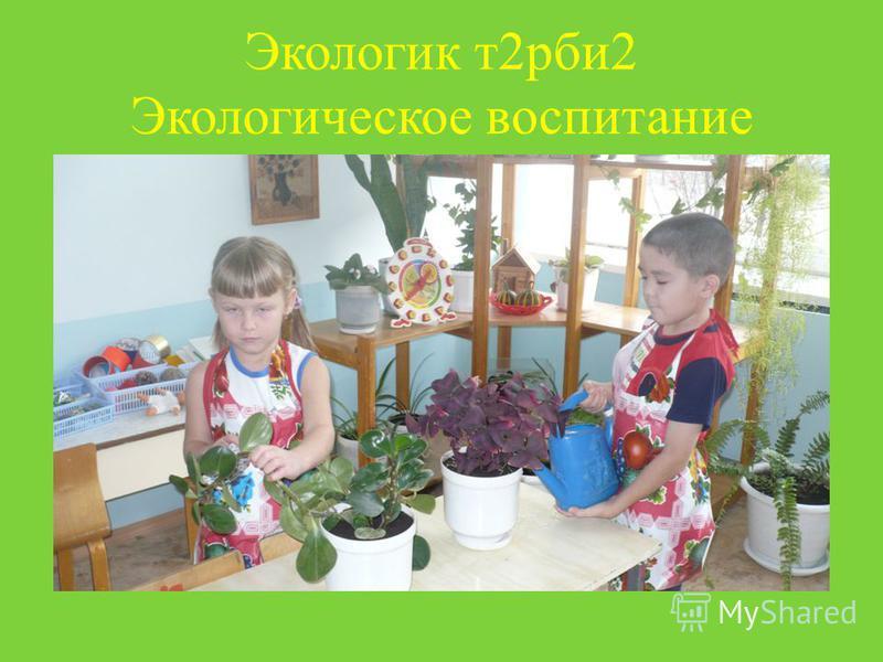 Экологик т 2 рби 2 Экологическое воспитание