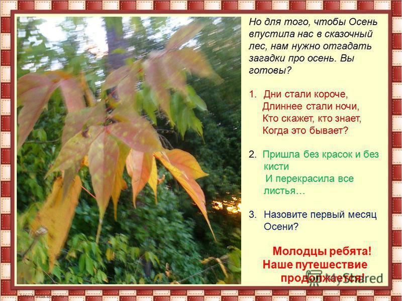Но для того, чтобы Осень впустила нас в сказочный лес, нам нужно отгадать загадки про осень. Вы готовы? 1. Дни стали короче, Длиннее стали ночи, Кто скажет, кто знает, Когда это бывает? 2. Пришла без красок и без кисти И перекрасила все листья… 3. На
