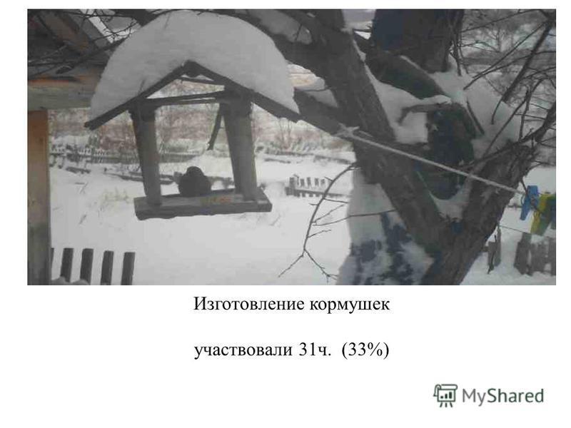 Изготовление кормушек участвовали 31 ч. (33%)