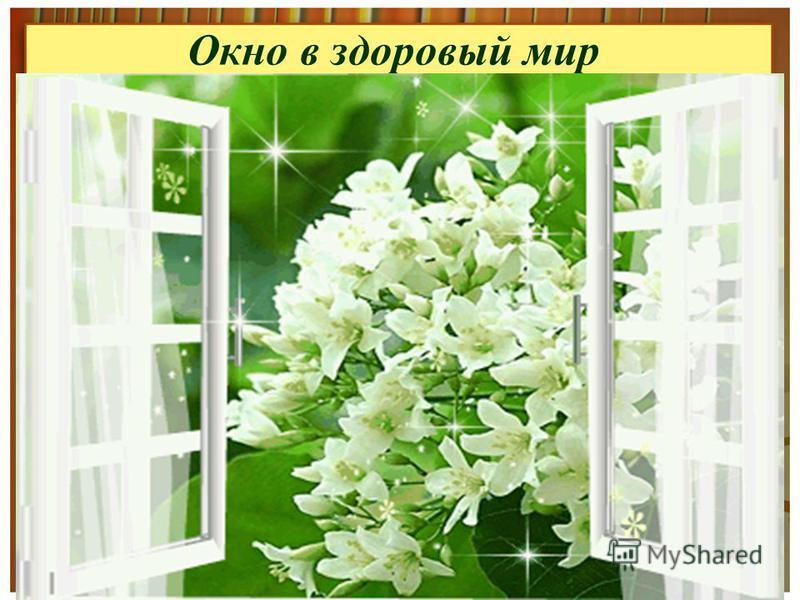 Окно в здоровый мир http://www.proshkolu.ru/user/PAN59/file/4 234452/