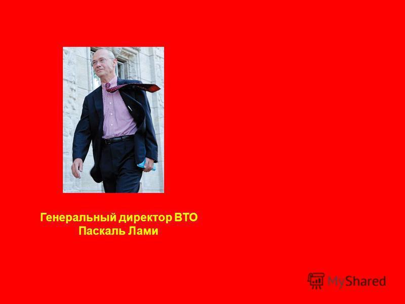 Генеральный директор ВТО Паскаль Лами
