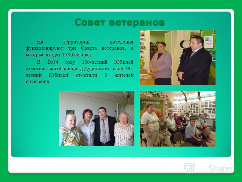 На территории поселения функционируют три Совета ветеранов, в которые входят 1580 человек. В 2014 году 100-летний Юбилей отметила жительница д.Дудинское, свой 90- летний Юбилей отметили 8 жителей поселения. Совет ветеранов