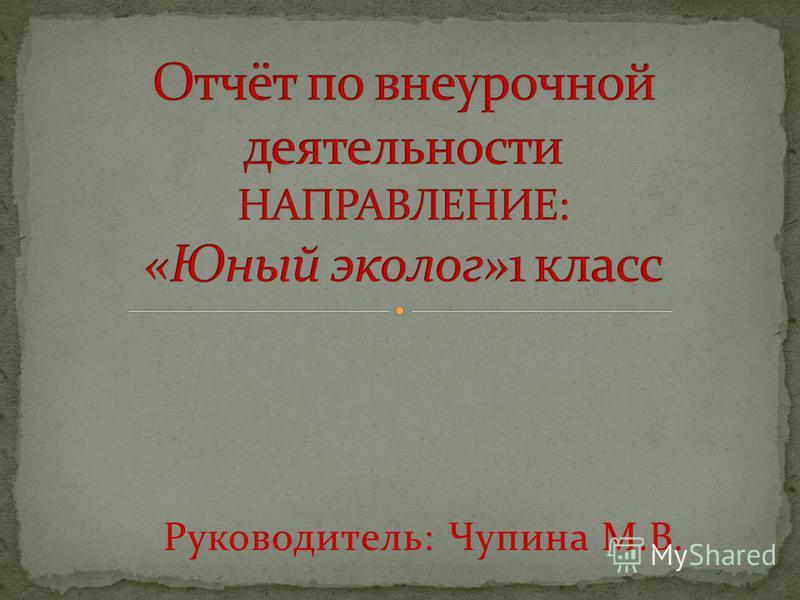 Руководитель: Чупина М.В.